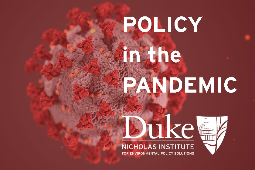 Policy in the Pandemic