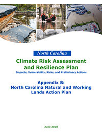 NWL Action Plan