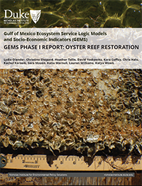 GEMS-Phase-I-Report-Oyster-Reef-Restoration-Cover
