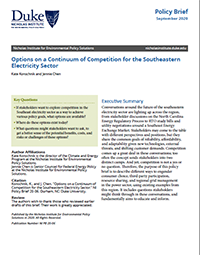 Options on a Continuum of Competition for the Southeastern Electricity Sector Cover