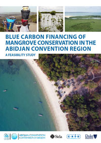 Blue Carbon Financing of Mangrove Conservation in the Abidijan Convention Region: A Feasibility Study