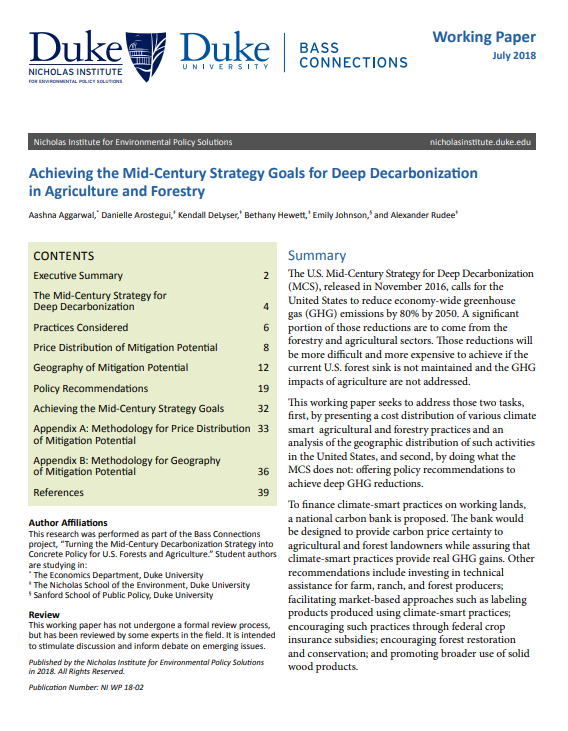Cover of Achieving the Mid-Century Strategy Goals for Deep Decarbonization in  Agriculture and Forestry