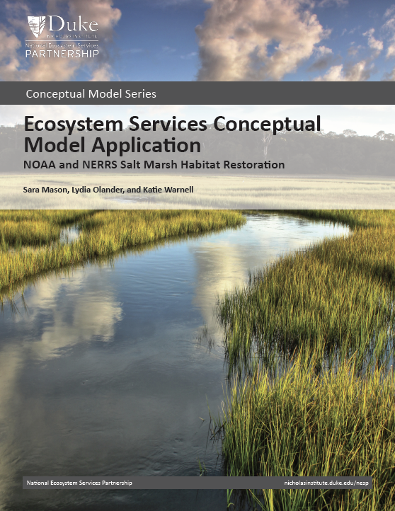 Ecosystem Services Conceptual Model Application: NOAA and NERRS Salt Marsh Habitat Restoration
