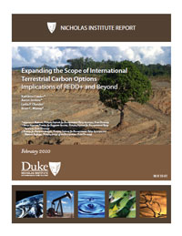 Expanding the Scope of International Terrestrial Carbon Options: Implications of REDD+ and Beyond