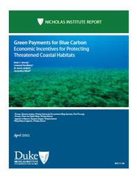 Green Payments for Blue Carbon: Economic Incentives for Protecting Threatened Coastal Habitats