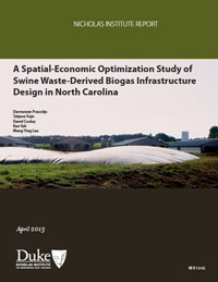 A Spatial-Economic Optimization Study of Swine-Waste Derived Biogas Infrastructure Design in North Carolina