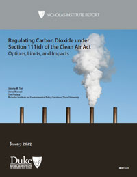 Regulating Carbon Dioxide under Section 111(d) of the Clean Air Act: Options, Limits, and Impacts