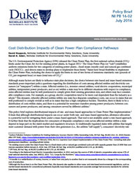 Cost Distribution Impacts of Clean Power Plan Compliance Pathways