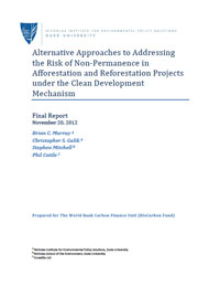 Alternative Approaches to Addressing the Risk of Non-Permanence in Afforestation and Reforestation Projects under the Clean Development Mechanism