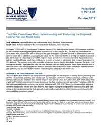The EPA's Clean Power Plan: Understanding and Evaluating the Proposed Federal Plan and Model Rules