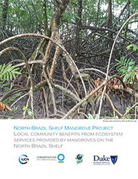 Local Community Benefits from Ecosystem Services Provided by Mangroves on the North Brazil Shelf