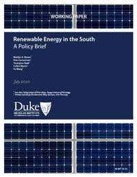 Renewable Energy in the South: A Policy Brief