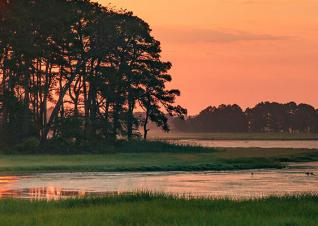 Chincoteague Sunset by iStock user pabradyphoto