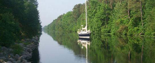 Great Dismal Swamp credit USACE