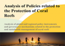 Analysis of Policies related to the Protection of Coral Reefs